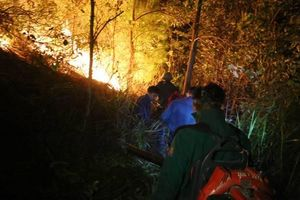 Hơn 500 người dập đám cháy rừng ngùn ngụt trong đêm ở Hà Tĩnh