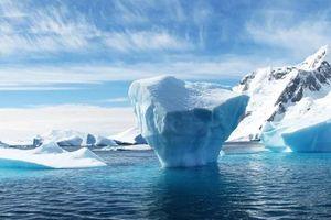 Triệu phú UAE và tham vọng kéo băng từ Nam cực về Trung Đông