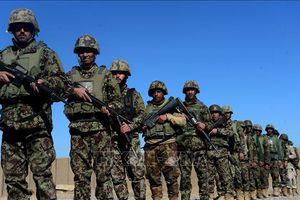 Taliban tấn công các trạm kiểm tra an ninh, 13 cảnh sát Afghanistan thiệt mạng