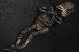Sinh vật bị nghi là 'người ngoài hành tinh' ở Nga cách đây 23 năm