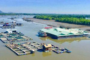 Trình Thủ tướng chấp thuận chủ trương Khu đô thị biển Vũng Tàu