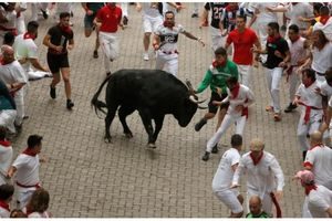Tây Ban Nha: Mạo hiểm chạy đua với những chú bò