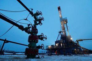 Đức tiếp tục ngừng nhập khẩu dầu thô của Nga do vấn đề chất lượng