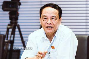Tiếp thu, chỉnh lý dự thảo Luật Xuất cảnh, nhập cảnh của công dân Việt Nam