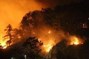 Trắng đêm cật lực dập lửa cứu rừng Hà Tĩnh