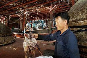Gần 1.000 tấn mực khô của ngư dân ở Quảng Nam bị tồn kho: Địa phương 'cầu cứu' Trung ương