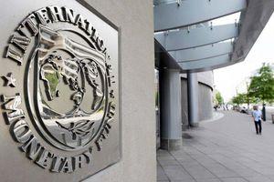 Ai sẽ là Tổng Giám đốc mới của IMF?