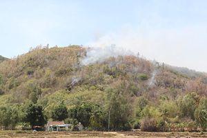Huy động hơn 400 người dập đám cháy rừng