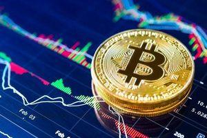 Giá Bitcoin liên tục 'trồi sụt' khiến nhà đầu tư không kịp xoay trở