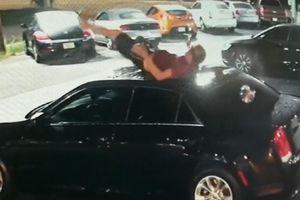 Chàng trai 'trên trời' rơi xuống bép nóc xe hơi và màn tẩu thoát nhanh gọn