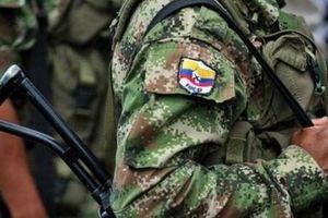 FARC đề nghị EU giám sát thực thi thỏa thuận hòa bình tại Colombia