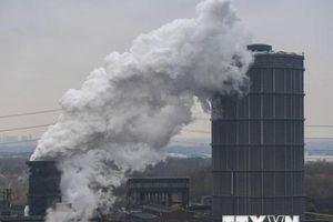 Đầu tư vì môi trường bị lu mờ trước đầu tư cho nhiên liệu hóa thạch