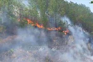 Khởi tố đối tượng liên quan đến vụ cháy rừng ở huyện Hương Sơn, Hà Tĩnh