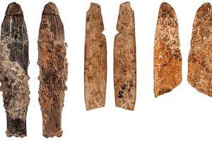 Phát hiện dao cổ 90.000 năm tuổi