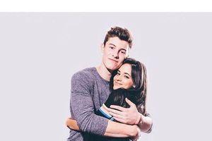 Dù phủ nhận tin đồn hẹn hò nhưng hình ảnh thân thiết này của Shawn Mendes và Camila Cabello lại khiến fan nghi ngờ
