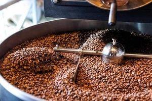Giá cà phê hôm nay 10/7: Tăng trở lại 200 đồng/kg
