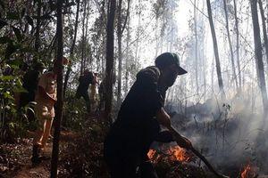 Cháy rừng nghi ngút, xuất hiện nhiều tiếng nổ vang trời ở Bình Định