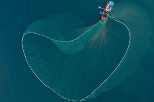 Cảnh quăng lưới đẹp ngoạn mục của ngư dân trên biển Phú Yên