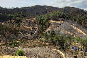 Quảng Nam: 22 tiếng đồng hồ dập tắt điểm cháy rừng