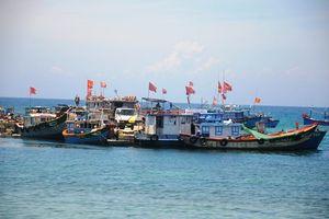 Nâng cao hiệu quả chống khai thác hải sản bất hợp pháp
