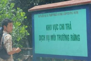 Quảng Nam: Sớm tháo gỡ vướng mắc trong cấp sổ đỏ đất lâm nghiệp