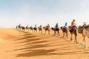 Hơn cả một chuyến đi: Trải nghiệm cuộc sống khắc nghiệt trên sa mạc Sahara
