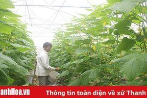 352 HTX nông nghiệp được xếp loại khá, giỏi