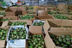 Sơn La đẩy mạnh xúc tiến xuất khẩu nông sản