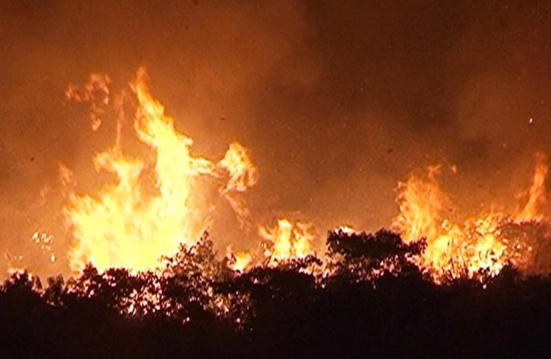 Quảng Ngãi: Một ngày xảy ra 3 vụ cháy rừng