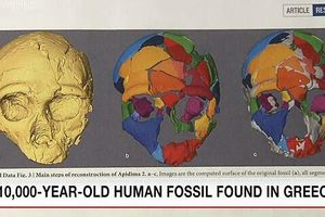 Tìm thấy hóa thạch cổ nhất của người hiện đại ngoài châu Phi