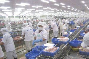 Lo nhiều 'gánh nặng', doanh nghiệp thủy sản đề xuất không tăng lương tối thiểu