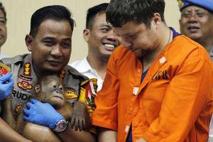 Du khách Nga bị kết án tại Bali vì buôn lậu đười ươi