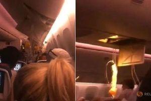 Máy bay Canada gặp nhiễu động mạnh, hàng chục người bị thương
