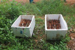Tháo gỡ hầm đạn dưới chân đèo Bảo Lộc