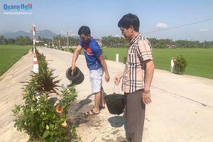 Huyện Nghĩa Hành, tỉnh Quảng Ngãi đạt chuẩn nông thôn mới