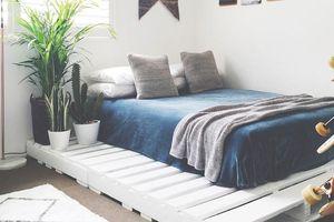 Độc đáo các kiểu giường pallet giá tiền hợp lý cho phòng ngủ của bạn