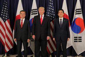 Muốn dàn xếp đàm phán 3 bên, Mỹ khẳng định Nhật Bản và Hàn Quốc 'không chỉ là bạn, mà còn là đồng minh'