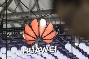 Doanh thu của Huawei vẫn tiếp tục tăng bất chấp lệnh cấm của Mỹ
