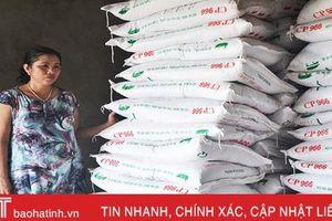 Đại lý thức ăn chăn nuôi ở Hà Tĩnh 'lao đao' theo dịch tả lợn châu Phi