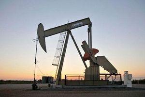 Giá xăng, dầu (12/7): Biến động nhẹ