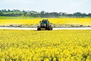 Canada đầu tư 9,95 triệu USD cho trồng trọt và đa dạng hóa ngũ cốc