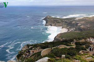 Phong cảnh hùng vĩ ở mũi Hảo Vọng- điểm tận cùng của Nam Phi