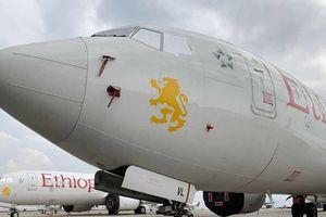 Boeing - Những lời cáo buộc 'từ trên trời' (Kỳ cuối: Hy vọng 737 Max sẽ sớm trở lại)