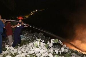 Chủ động phòng cháy chữa cháy rừng mùa nắng nóng