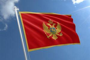 Lãnh đạo Đảng, Nhà nước gửi điện mừng Quốc khánh Montenegro