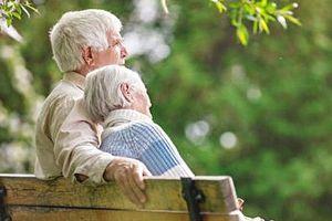 Thương yêu của người già