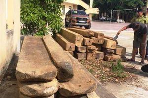 Quảng Bình: Truy đuổi 'lâm tặc', một kiểm lâm viên bị đánh nhập viện