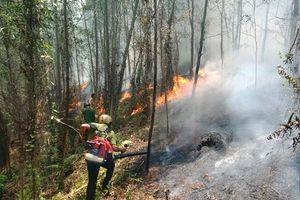 Hà Tĩnh: Chỉ đạo điều tra làm rõ các vụ cháy rừng tại huyện Hương Sơn