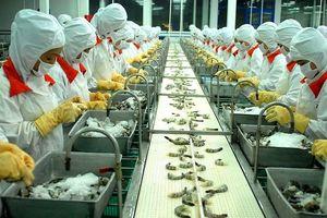Kinh tế Việt Nam 2019 sẽ theo kịch bản nào?
