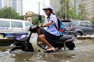 TP.HCM lắp trạm cảnh báo ngập đầu tiên ở đường Nguyễn Hữu Cảnh